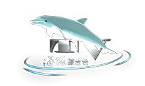 海豚综合台