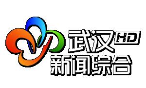 武汉新闻综合频道